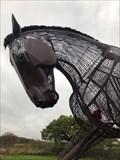 Image for War Horse - Featherstone, UK