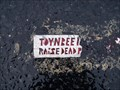 Image for Toynbee Raise the Dead @ ShopRite Parking Lot - Marlton, NJ