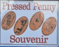 Image for The Dolphin Penny Smasher