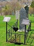 Image for Sophia L. McLachlan - Lunenburg, NS