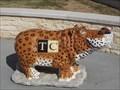 Image for Temple College Hippo - Hutto, TX