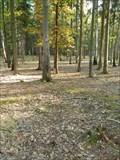Image for TB 1420-41.0 Kunratický les