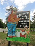 Image for Smokey Bear Deam Lake State Recreation Area Indiana