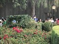 Image for Luigi's Rollickin' Roadsters Topiary - Anaheim, CA