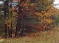 Image for Marion Road Conservation Area  -  Burlington, MA
