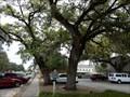 Image for Ranger Oaks, The - Seguin, TX