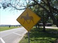 Image for Cowboy Crossing - Connor's State College - Warner, OK