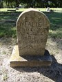 Image for Nealie McAlister - Gordonville Cemetery - Gordonville, TX