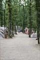 Image for Camping Orlando In Chianti, Cavriglia, Italy