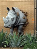 Image for Rhino - San Antonio, TX