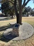 Image for HSU Student Veterans Tree - Abilene, TX