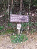 Image for Gregory Ridge Trail - Forge Creek Road end - Great Smoky Mountains National Park, TN