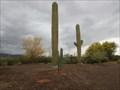 Image for Rio Verde Road Cell Tower - Rio Verde, Arizona