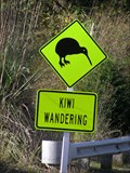 Image for Kiwi Crossing. Ohope Hill. Bay of Plenty. New Zealand.