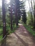 Image for Tharandter Wald, Lk. Sächs. Schweiz-Osterzgebirge, Sachsen, D