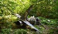 Image for Van Wyck Mountain T-33 Crash Site