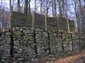 Image for Wildenburg keltischer Ringwallbefestigung