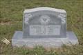 Image for Lizzie E. Aston - Mt. Pleasant Cemetery - Tolar, TX