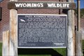 Image for Wyoming'a Wildlife-Enjoy Wyoming's Wildlands