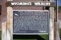 Image for Wyoming'a Wildlife-Enjoy Wyoming's Wildlands