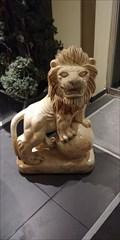 Image for Le lion mâle de Tamashi