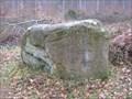 Image for Le dolmen de Chancy
