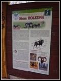 Image for Information Sign (Mouflon) - Brno, Czech Republic