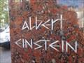 Image for Albert Einstein Memorial & Einstein Crater on Moon - Ulm, Germany, BW