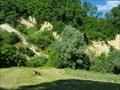 Image for Pannonian Sea Fossils in Hum Zabocki, Croatia