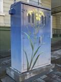 Image for Flower  Box - San Francisco, CA