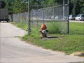 Image for Dog Hydrant