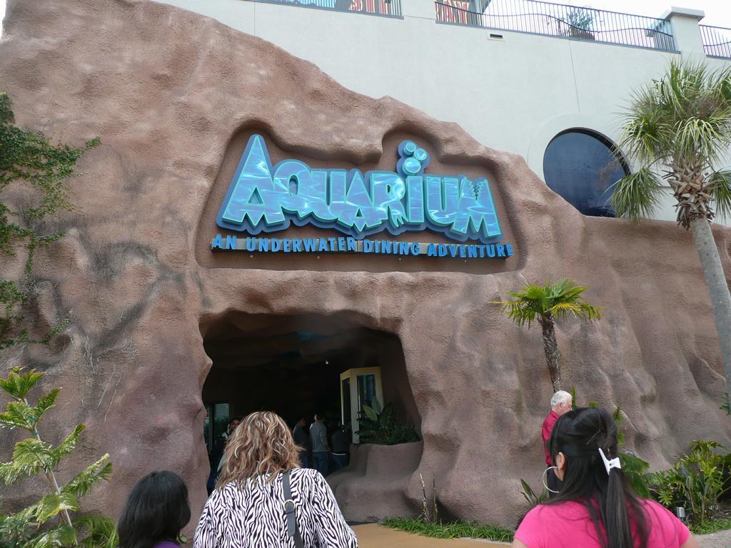 ... - Public Aquariums Waymark - Stingray Reef & Aquarium - Kemah TX