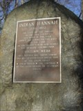 Image for Indian Hannah