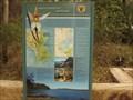 Image for Wangi Point, Lake Macquarie SCA, NSW, Australia