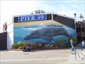 Image for Tourism - Pier 39