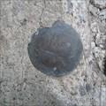 Image for Benchmark disk 6796.0 - Clark County, Idaho, USA