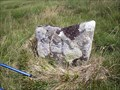 Image for H Boundary Stone, Willsworthy, Dartmoor.
