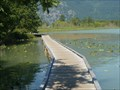 Image for One Mile Lake Boardwalk, Pemberton, BC