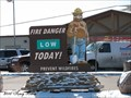 Image for Smokey the Bear Sign - Canon City, CO