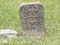 Image for M.M. Davidson - Wells Cemetery, Cleveland, TX