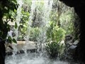 Image for Waterfall by the Ginger Garden in the Botanic Garden of Singapore
