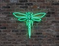 Image for The Dragonfly Club - Manchester, UK