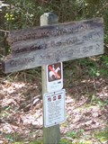 Image for Scott Mountain Trail at Schoolhouse Gap - Great Smoky Mountains National Park, TN