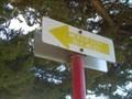 Image for Dennis the Menace Park - Monterey, California