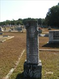 Image for John Francis Moss - Troy Cemetery, Troy, SC