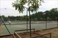 Image for Courts de Tennis // Tennis Courts - Luxembourg Gardens, Paris, France