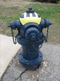 Image for Michigan Wolverine, Ann Arbor, MI