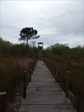 Image for Boardwalk @ Salinas da Junqueira - Monte Real, Portugal