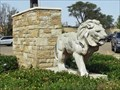 Image for Lions - New Deal, TX
