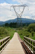 Image for Discovery Trail Boardwalk — Abbotsford, BC